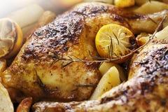 жаркое цыпленка Стоковая Фотография