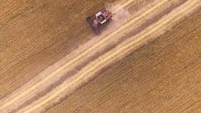 Жатка зернокомбайна вида с воздуха собирает пшеницу сток-видео