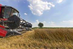 Жатка зернокомбайна жать пшеницу Зерно жать зернокомбайн позволяет gps компьютера зернокомбайнов зернокомбайна совершенно кормило Стоковая Фотография
