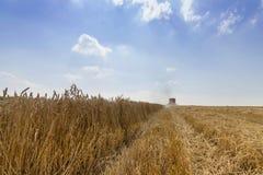 Жатка зернокомбайна жать пшеницу Зерно жать зернокомбайн позволяет gps компьютера зернокомбайнов зернокомбайна совершенно кормило Стоковые Фото