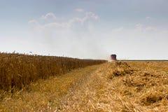 Жатка зернокомбайна жать пшеницу Зерно жать зернокомбайн позволяет gps компьютера зернокомбайнов зернокомбайна совершенно кормило Стоковое Изображение