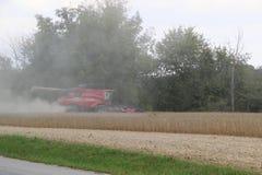Жатка зернокомбайна на поле на Effingham Иллинойсе Стоковая Фотография RF