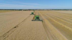 Жатка зернокомбайна на пшеничном поле сток-видео