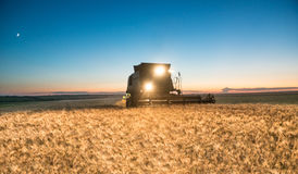 Жатка зернокомбайна работая на урожае пшеницы на ноче Стоковое фото RF