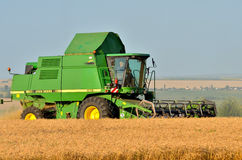 Жатка зернокомбайна работая поле Стоковое Изображение RF