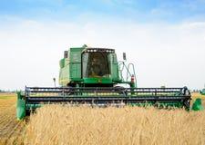 Жатка зернокомбайна John Deere жать пшеницу в поле Стоковое фото RF