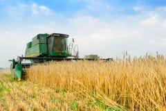 Жатка зернокомбайна John Deere жать пшеницу в поле Стоковое Изображение RF