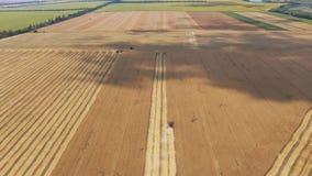 Жатка комбайна на пшеничном поле акции видеоматериалы