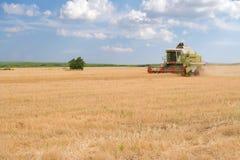 жатка поля зернокомбайна Стоковые Фотографии RF