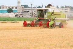 жатка поля зернокомбайна Стоковое Изображение RF