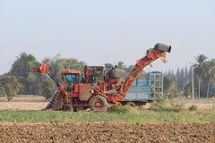 Жатка сахарного тростника и трактор 10-колеса Стоковые Изображения RF