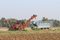 Жатка сахарного тростника и трактор 10-колеса Стоковая Фотография