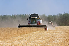 Жатки зернокомбайна работая на пшеничном поле Стоковые Изображения RF