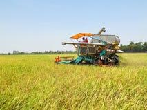 Жатки зернокомбайна режа пшеничное поле Стоковое фото RF