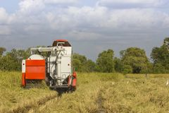 Жатки зернокомбайна Таиланда работая поле риса Стоковое Изображение