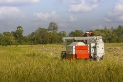 Жатки зернокомбайна Таиланда работая поле риса Стоковые Фотографии RF