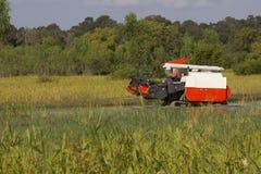 Жатки зернокомбайна Таиланда работая поле риса Стоковое фото RF