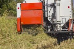 Жатки зернокомбайна Таиланда работая рис field задний взгляд Стоковое Изображение RF