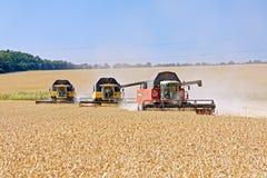 Жатки зернокомбайнов работая на пшеничном поле Стоковые Фотографии RF