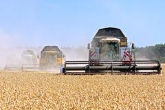 Жатки зернокомбайнов работая на пшеничном поле Стоковые Изображения RF