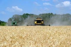 Жатки зернокомбайнов работая на пшеничном поле Стоковое Изображение