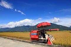 Жатки на рисовых полях в ¼ ŒTaiwan Taidongï Стоковая Фотография
