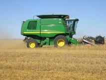 жать пшеницу Стоковая Фотография RF