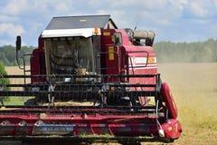 Жать пшеницы Россия Стоковые Изображения