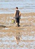 Жать shellfish стоковое фото rf