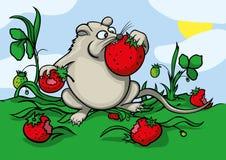 Жадная мышь Стоковая Фотография