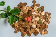 Жадность для денег Стоковые Изображения RF