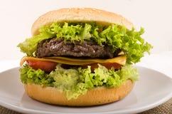 Жалуйтесь салат гамбургера, отрезанный сыр и куски томата на плите Стоковая Фотография RF