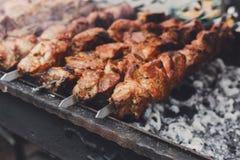 жалуйтесь kebab Свежее зажаренное в духовке мясо на гриле, bbq, крупном плане Стоковое Фото