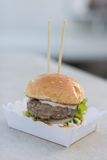 Жалуйтесь serverd плюшки бургера и соуса и сезама майонеза на бумажной коробке Стоковые Изображения