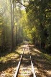 Железная дорога в парке осени Стоковая Фотография