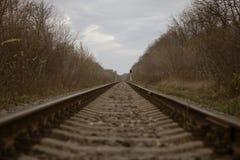 Железная дорога идет в расстояние стоковые изображения rf