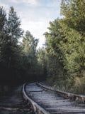 Железная дорога к лесу стоковая фотография rf