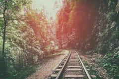 Железная дорога среди гор, утесов и одичалых лесов на заходе солнца в тумане, драматическом загадочном ландшафте Стоковые Фото