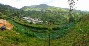 Железная дорога среди плантаций чая и деревень Nanuoya стоковая фотография rf