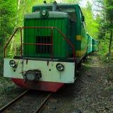 Железная дорога узкой колеи, тепловозный поезд с экипажами Стоковое фото RF