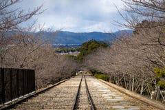 Железная дорога уклона Keage старая окруженная вишневыми деревьями стоковые изображения