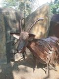 Железная коза Стоковые Изображения RF