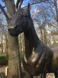 Железная лошадь в парке осени Стоковое Изображение