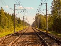 Железнодорожные пути в лесе на солнечный летний день стоковое фото rf