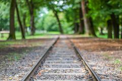 Железнодорожные пути, в лесе стоковые изображения rf