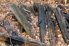 Железнодорожные связи в листьях Стоковое Фото