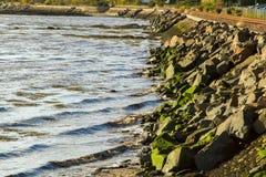 Железнодорожные следы морем Стоковое Фото