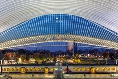 Железнодорожный вокзал поезда Liege Guillemins тренирует Сантьяго Калатрава Стоковое Изображение