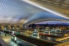 Железнодорожный вокзал поезда Liege Guillemins тренирует Сантьяго Калатрава Стоковые Изображения
