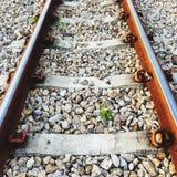 Железнодорожный путь в Таиланде Стоковые Фото